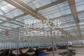 银川玻璃温室展示图钢架9